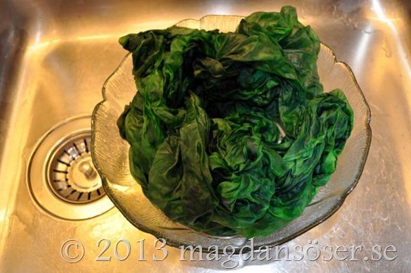 fargad-gron-sloja-vasken