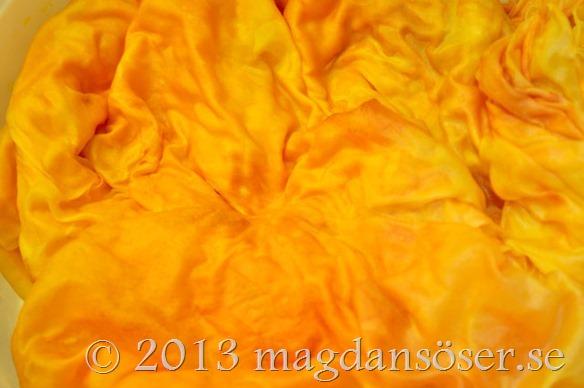 silkessloja-vasken
